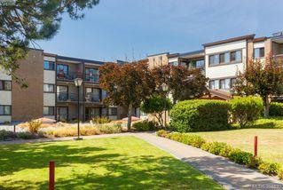 Photo 1: 326 1870 McKenzie Avenue in VICTORIA: SE Lambrick Park Condo Apartment for sale (Saanich East)  : MLS®# 394635