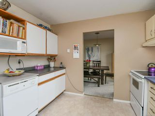Photo 14: 558 23rd St in COURTENAY: CV Courtenay City House for sale (Comox Valley)  : MLS®# 797770