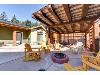 "Photo 16: 12335 267 Street in Maple Ridge: Northeast House for sale in ""MCFADDEN CREEK ESTATES"" : MLS®# R2313979"