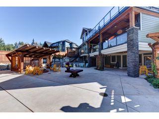 "Photo 14: 12335 267 Street in Maple Ridge: Northeast House for sale in ""MCFADDEN CREEK ESTATES"" : MLS®# R2313979"