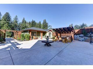 "Photo 15: 12335 267 Street in Maple Ridge: Northeast House for sale in ""MCFADDEN CREEK ESTATES"" : MLS®# R2313979"