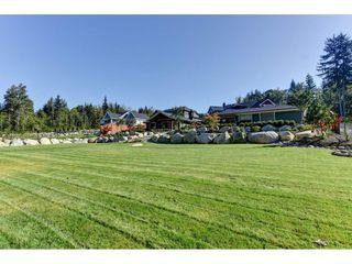 "Photo 19: 12335 267 Street in Maple Ridge: Northeast House for sale in ""MCFADDEN CREEK ESTATES"" : MLS®# R2313979"