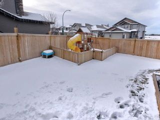 Photo 25: 54 DANFIELD Place: Spruce Grove House for sale : MLS®# E4138422