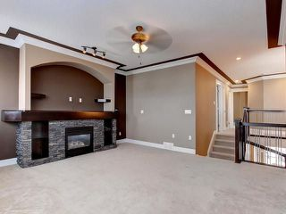 Photo 15: 54 DANFIELD Place: Spruce Grove House for sale : MLS®# E4138422