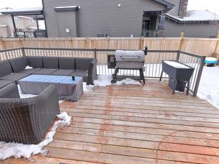 Photo 24: 54 DANFIELD Place: Spruce Grove House for sale : MLS®# E4138422