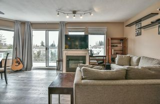 Photo 3: 301 27358 32 Avenue in Langley: Aldergrove Langley Condo for sale : MLS®# R2343465