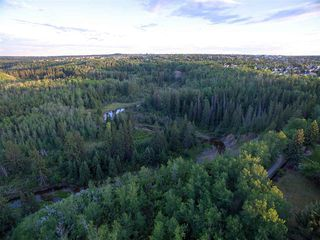 Photo 28: 441 BUTCHART Drive in Edmonton: Zone 14 House for sale : MLS®# E4156348