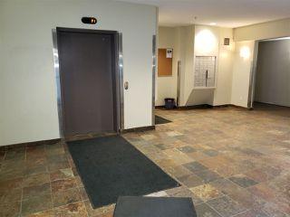 Photo 11: 223 4304 139 Avenue in Edmonton: Zone 35 Condo for sale : MLS®# E4157408