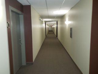 Photo 13: 223 4304 139 Avenue in Edmonton: Zone 35 Condo for sale : MLS®# E4157408
