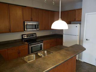 Photo 5: 223 4304 139 Avenue in Edmonton: Zone 35 Condo for sale : MLS®# E4157408