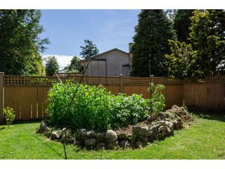 Photo 19: 7262 140A Street in Surrey: East Newton House for sale : MLS®# R2378406