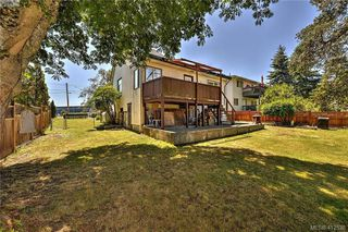 Photo 6: 906 Old Esquimalt Rd in VICTORIA: Es Old Esquimalt Single Family Detached for sale (Esquimalt)  : MLS®# 818030