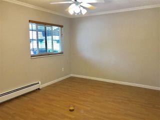 "Photo 14: 211 13931 74 Avenue in Surrey: East Newton Townhouse for sale in ""GLENCOE"" : MLS®# R2382340"