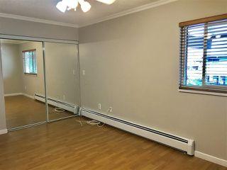 "Photo 13: 211 13931 74 Avenue in Surrey: East Newton Townhouse for sale in ""GLENCOE"" : MLS®# R2382340"