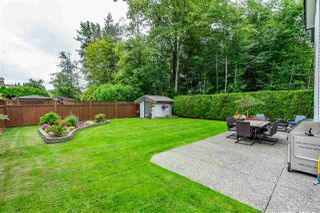 Photo 19: 8964 207 Street in Langley: Walnut Grove House for sale : MLS®# R2385881
