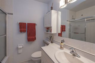 Photo 20: 23 AMHERST Crescent: St. Albert House for sale : MLS®# E4165073