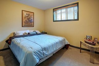 Photo 33: 40 AUTUMN Close SE in Calgary: Auburn Bay Detached for sale : MLS®# C4264321