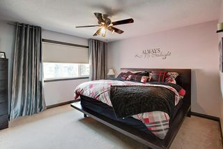 Photo 26: 40 AUTUMN Close SE in Calgary: Auburn Bay Detached for sale : MLS®# C4264321