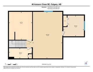 Photo 43: 40 AUTUMN Close SE in Calgary: Auburn Bay Detached for sale : MLS®# C4264321