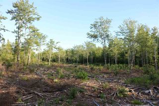 Photo 5: East Uniacke Road in Mount Uniacke: 105-East Hants/Colchester West Vacant Land for sale (Halifax-Dartmouth)  : MLS®# 202007635