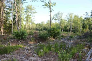 Photo 4: East Uniacke Road in Mount Uniacke: 105-East Hants/Colchester West Vacant Land for sale (Halifax-Dartmouth)  : MLS®# 202007635