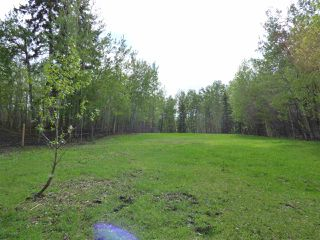 Photo 35: 241 52122 RGE RD 210: Rural Strathcona County House for sale : MLS®# E4198716