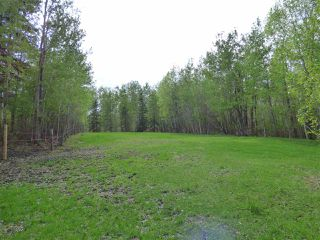 Photo 34: 241 52122 RGE RD 210: Rural Strathcona County House for sale : MLS®# E4198716