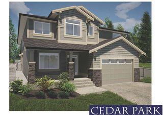 "Main Photo: 23709 132 Avenue in Maple Ridge: Silver Valley House for sale in ""ROCK RIDGE AREA"" : MLS®# R2464035"