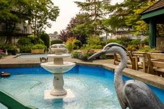 """Photo 19: 110 5360 205 Street in Langley: Langley City Condo for sale in """"Parkway Estates"""" : MLS®# R2503336"""