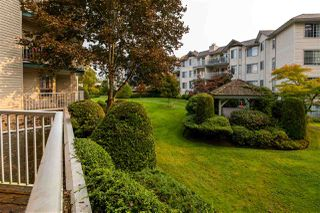 """Photo 15: 110 5360 205 Street in Langley: Langley City Condo for sale in """"Parkway Estates"""" : MLS®# R2503336"""
