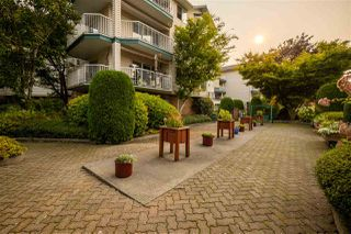 """Photo 18: 110 5360 205 Street in Langley: Langley City Condo for sale in """"Parkway Estates"""" : MLS®# R2503336"""