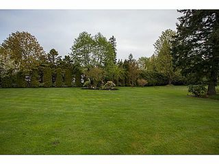 Photo 3: 17155 26A Avenue in Surrey: Grandview Surrey House for sale (South Surrey White Rock)  : MLS®# F1409954