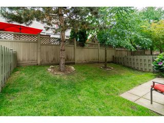 """Photo 20: 155 20033 70TH Avenue in Langley: Willoughby Heights Townhouse for sale in """"DENIM II"""" : MLS®# R2091799"""