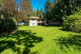 Photo 16: 11826 97 Avenue in Surrey: Royal Heights House for sale (North Surrey)  : MLS®# R2163352