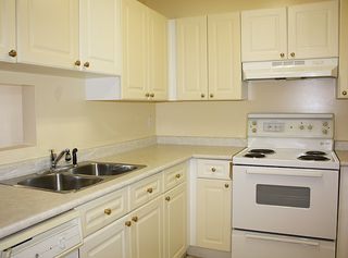"""Photo 8: 206 9946 151 Street in Surrey: Guildford Condo for sale in """"Westchester Place"""" (North Surrey)  : MLS®# R2169746"""