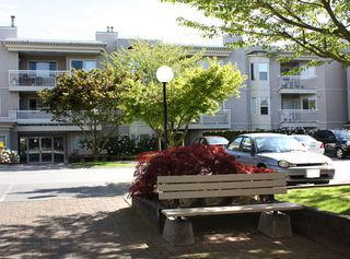 """Photo 20: 206 9946 151 Street in Surrey: Guildford Condo for sale in """"Westchester Place"""" (North Surrey)  : MLS®# R2169746"""