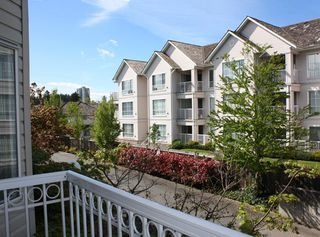 """Photo 19: 206 9946 151 Street in Surrey: Guildford Condo for sale in """"Westchester Place"""" (North Surrey)  : MLS®# R2169746"""