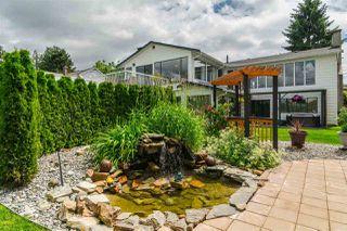 "Photo 17: 21091 123RD Avenue in Maple Ridge: Northwest Maple Ridge House for sale in ""WEST MAPLE RIDGE"" : MLS®# R2179885"