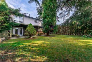 "Photo 4: 4971 208A Street in Langley: Langley City House for sale in ""Newlands"" : MLS®# R2320480"