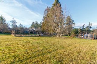 Photo 31: 1037 Maple Road in NORTH SAANICH: NS Lands End Single Family Detached for sale (North Saanich)  : MLS®# 405062