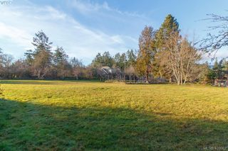Photo 30: 1037 Maple Rd in NORTH SAANICH: NS Lands End Single Family Detached for sale (North Saanich)  : MLS®# 804874