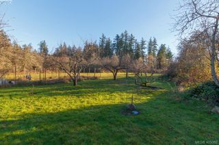 Photo 25: 1037 Maple Road in NORTH SAANICH: NS Lands End Single Family Detached for sale (North Saanich)  : MLS®# 405062