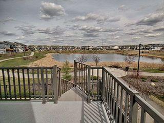 Photo 5: 17039 43 Street in Edmonton: Zone 03 House for sale : MLS®# E4156663