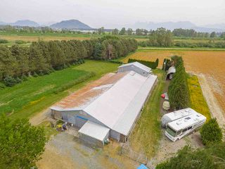 Photo 11: 6230 TOLMIE Road in Abbotsford: Sumas Prairie House for sale : MLS®# R2372564