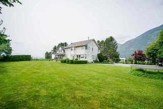 Photo 7: 6230 TOLMIE Road in Abbotsford: Sumas Prairie House for sale : MLS®# R2372564