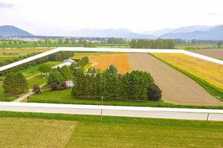 Photo 15: 6230 TOLMIE Road in Abbotsford: Sumas Prairie House for sale : MLS®# R2372564