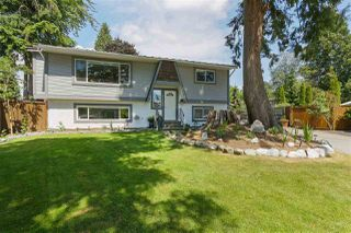 Main Photo: 21043 121 Avenue in Maple Ridge: Northwest Maple Ridge House for sale : MLS®# R2379574