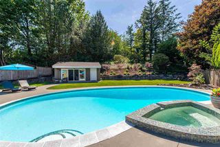 Photo 18: 2115 SANDSTONE Drive in Abbotsford: Abbotsford East House for sale : MLS®# R2379663