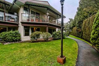 """Photo 17: 103 13864 102 Avenue in Surrey: Whalley Townhouse for sale in """"GLENDALE VILLAGE"""" (North Surrey)  : MLS®# R2380578"""