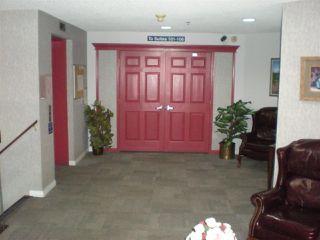 Photo 3: 405 17519 98A Avenue NW in Edmonton: Zone 20 Condo for sale : MLS®# E4163045